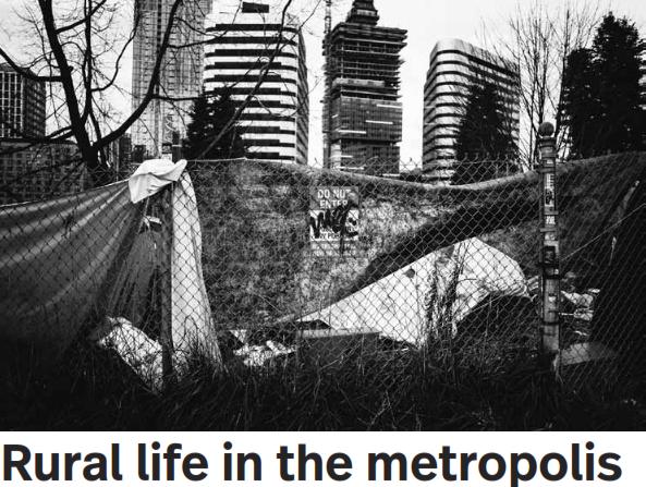 Rural life in the metropolis