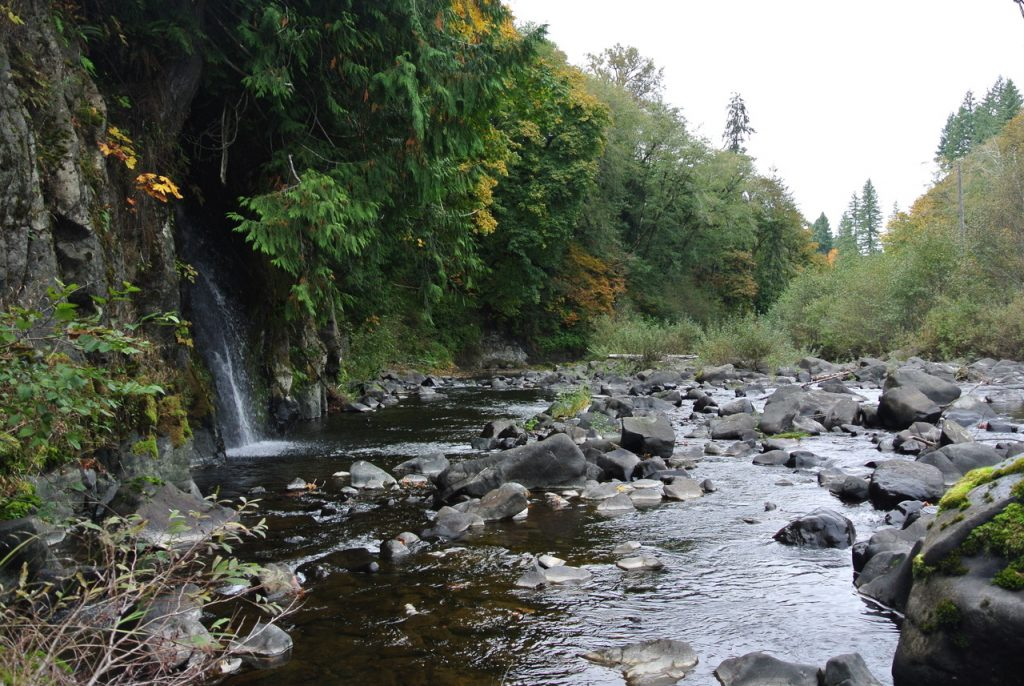 The site near the headwaters of the Chehalis River that is considered a possibility for construction of a new dam.
